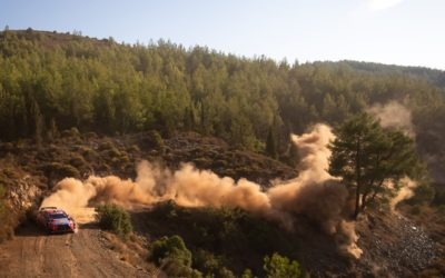 WRC figures slam inaction on repeated dust concerns – DirtFish